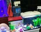 森森水族鱼缸