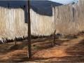 中国粉条产业网供应纯手工红薯粉条