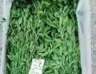 宠物用品饲料猫粮猫砂兔粮提摩西苜蓿草