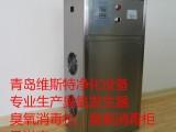 平度臭氧发生器生产厂家平度臭氧发生器价格