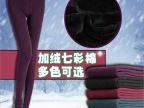 350g冬季加绒加厚七彩棉打底裤时尚无缝一体裤大码女九分裤批发