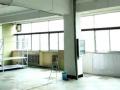 高区北洋电气对面办公或厂房仓库150平米南向大通间