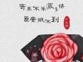 派多格宠物拾城塾店春节寄养火热预定中