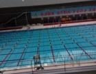 深圳湾,大学城,文体,福田体育公园各室内恒温专业游泳私教