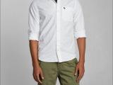 2014年春秋季新款修身全棉翻领 af正品休闲男式长袖衬衫衬衣潮