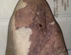 金沙江鹦鹉图案奇石