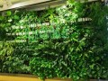 上海仿真植物墙 真的植物墙 庭院景观公司