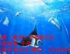 香港旅游两天一晚(海洋公园+迪士尼)630 港澳游指南