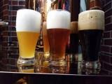 永胜啤酒设备--欧维斯精酿啤酒