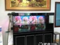 龙华专业鱼缸定制,深圳生态鱼缸定做根据要求免费设计