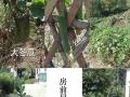 太平猴魁原产地猴坑村农家乐客房预定