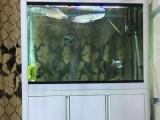 低价出售9成新鱼缸