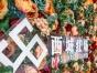 哈尔滨专业摄影室摄影棚出租,淘宝服装产品拍摄