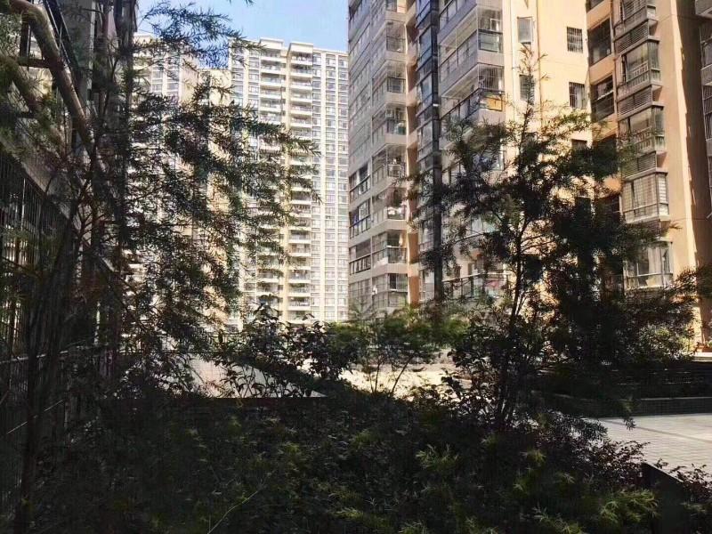 固戍村委统建楼 东山花园 4栋花园16800起东山花园
