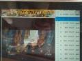 ipad164g苹果平板电脑可看电视直播