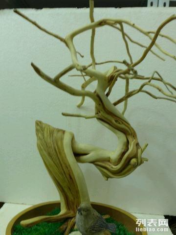 菩提树盆景淘宝