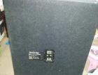 美国 PHONIC丰力克 SE-209 音箱