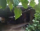 南部山区 厂房 2000平米 出租养殖场