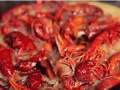 盱眙十三香龙虾调料批发加盟 感冒了能吃龙虾吗