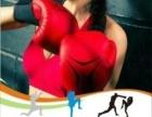 武术 红拳 散打 拳击 泰拳 女子防身术