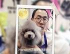 Dogroom犬之道宠物美容培训学校