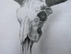 武汉甄缮美美术培训 成人美术绘画素描水彩