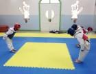 通州土桥专业少儿跆拳道培训班 基础班 免费试听