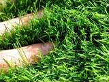 供应安徽铜陵足球场专用人造草坪,仿真草坪