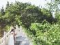 【圆梦婚纱摄影】如何选照片才能挑选出自己喜欢的照片