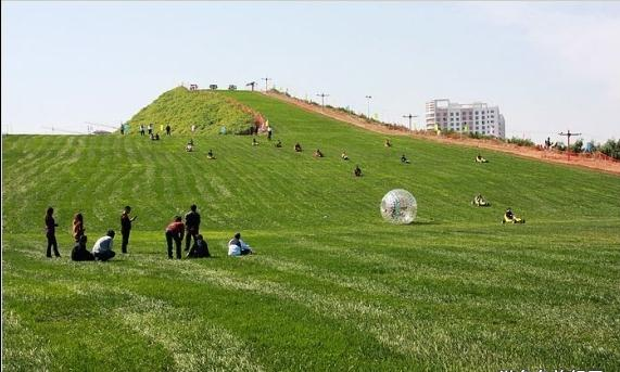 绵阳市申请报告正规撰写找千寻企划