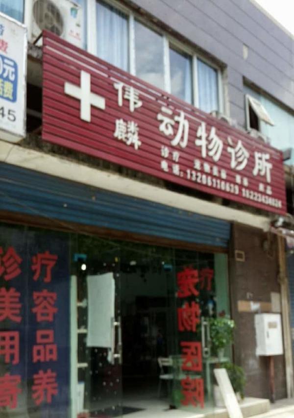 江北南桥寺伟麟宠物医院