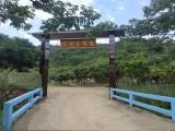 东莞周边一日游 氧吧基地黄江乐湖生态园团建活动