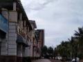 东海大道二层楼300平米连地皮600平米出售
