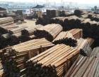 租赁钢管建材常年收售架管工字钢扣件顶丝轮扣