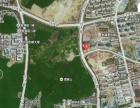 南京仙林凯特宠物医院(仙林湖、摄山星城、经天路)