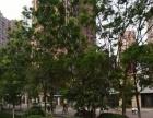 出租青山湖京东大道商业街卖场