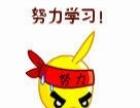 【4月特训】韶关高考冲刺闭门特训50天,艺考生文化