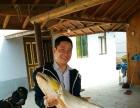 梅花岛生态农庄 农家院 吃喝玩乐住