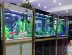 重庆26度水族用品有限公司诚征各地经销、代理合作