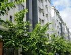 常平 紫荆花园三房2厅空房 业主急租 价格可谈有钥匙看房