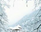川西鹧鸪山自然公园 龙溪羌人谷双汽三日游[川西旅游/滑雪]