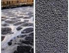 轻质陶粒厂家建筑花卉净化生物陶粒滤料价格