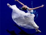 贵阳成人舞蹈哪家好信任铸舞台,合作赢未来