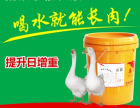 滄州市鵝飼料加工廠 質量優良
