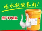 菏泽市鹅饲料公司 质量优良
