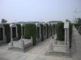 天津公墓服务中心