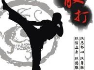 济南最佳精品专业散打搏击俱乐部防身术专业培训机构泰拳