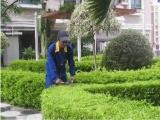 廣東綠化養護服務,小區學校單位企業私人訂制綠化養護