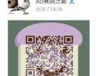 北京惠翔卡普赛鸽工棚 赛鸽 天落鸟 特比环 质量高级 诚信赢