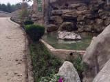 乐山人民公墓价格 沙湾烈士陵园 较好柏香坡公墓服务电话